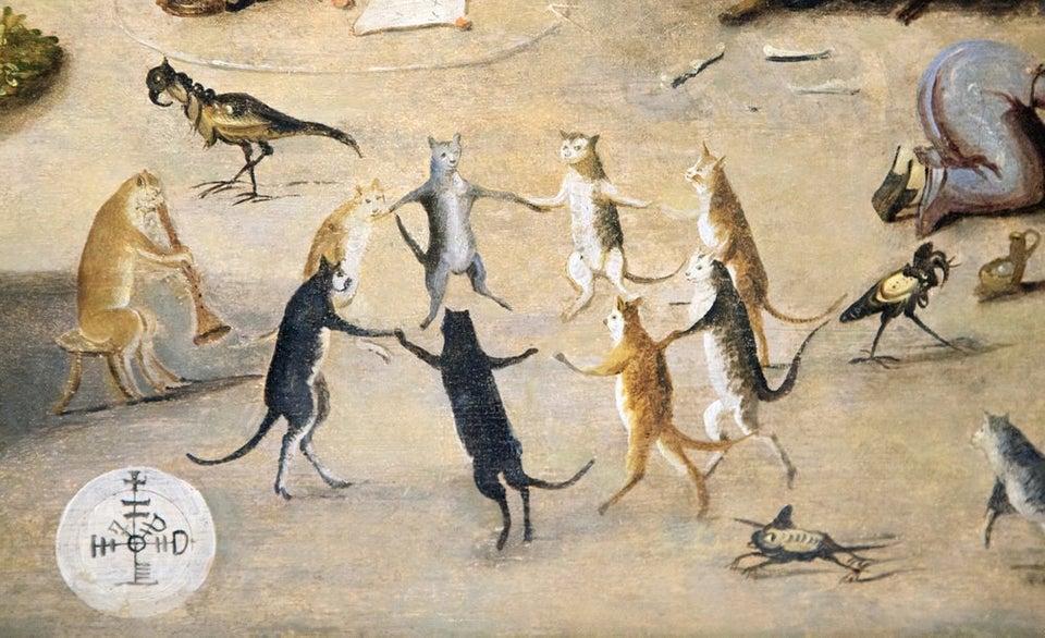 medieval cats jan
