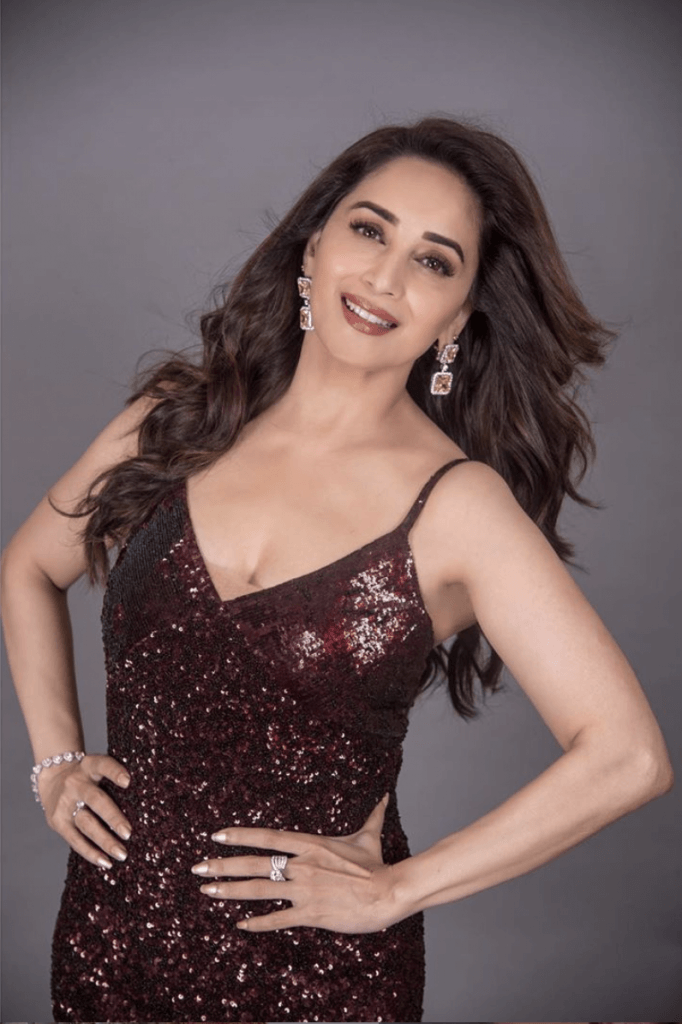madhuri dixit iifa press conf 2019