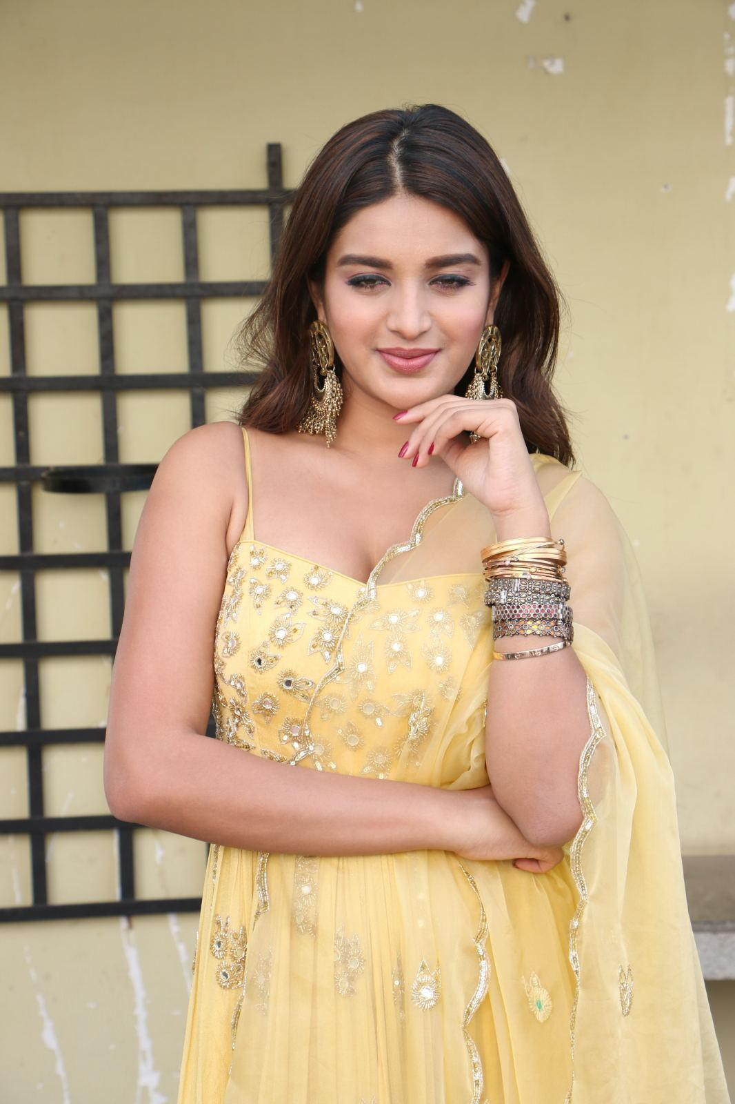 Nidhhi Agerwal sexy photos