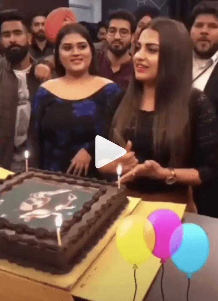 himanshi khurana birthday celebration bigg boss 13