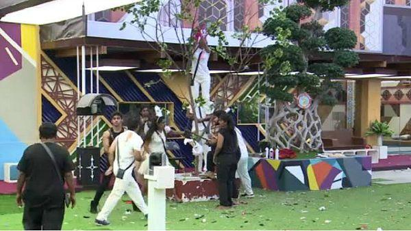 bbk7-luxury-budget-task