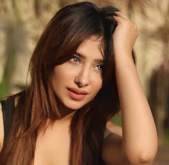 mahira sharma bigg boss 13