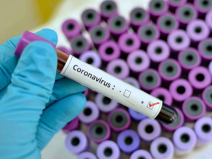 coronavirus kk nagar chennai