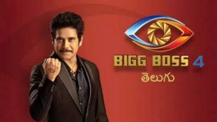 Bigg Boss 4 Telugu Voting