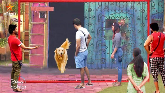 Som Shekar Dog Passed away
