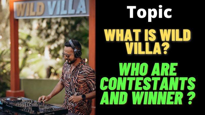 splitsvilla 13 wildvilla contestants list