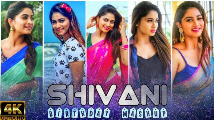 Shivani Narayanan Song video