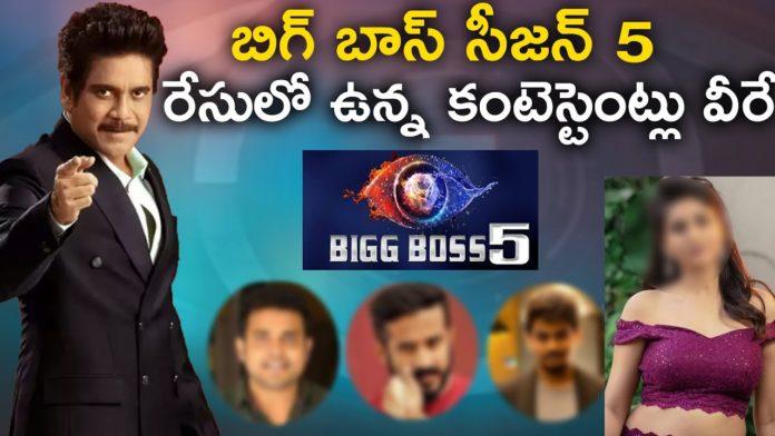 Bigg Boss 5 Telugu contestants